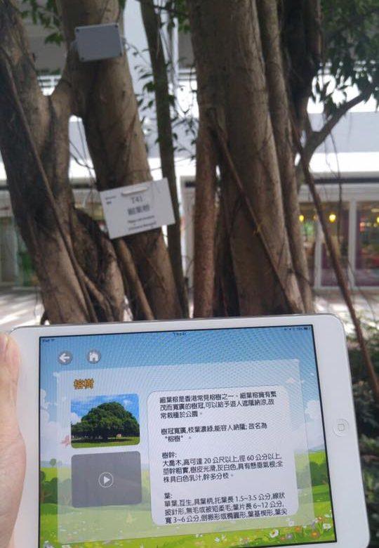 TREE APP